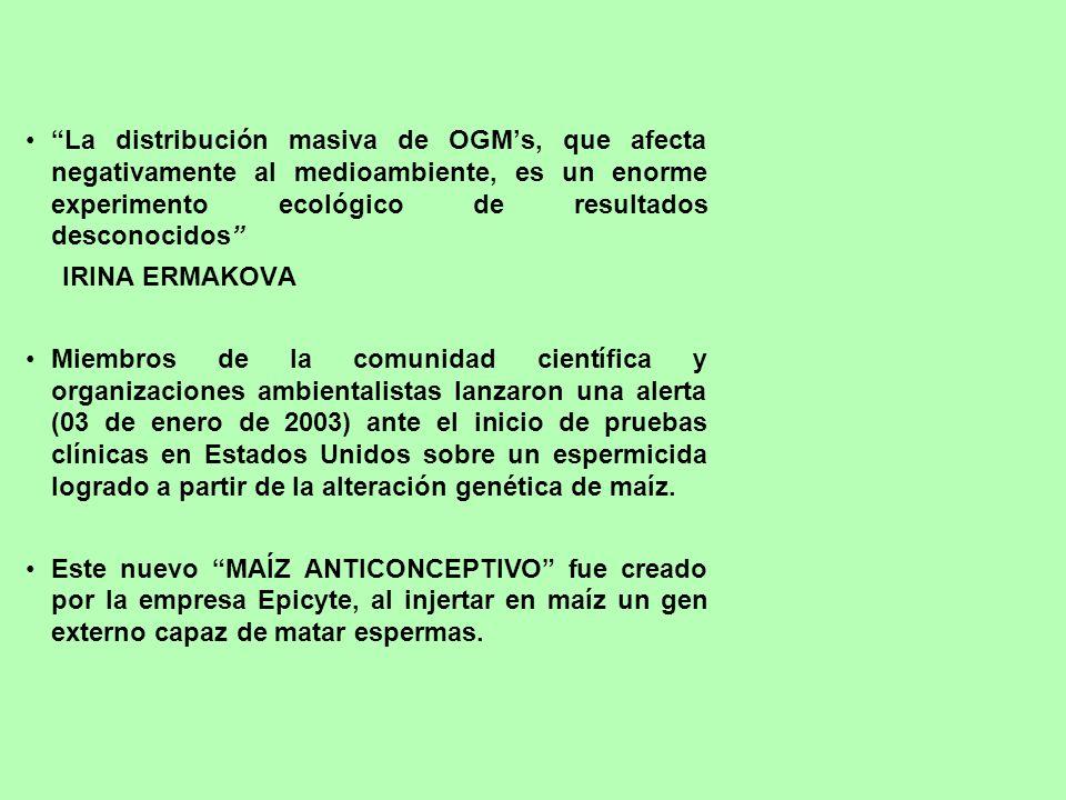 La distribución masiva de OGMs, que afecta negativamente al medioambiente, es un enorme experimento ecológico de resultados desconocidos IRINA ERMAKOV