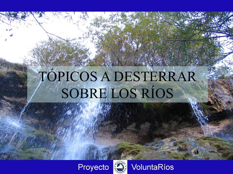 TÓPICOS A DESTERRAR SOBRE LOS RÍOS 5.c El río no es una calle que haya que limpiar, debe tener troncos, cantos rodados, sedimentos, pozas, islas: es el resultado de la dinámica del río.