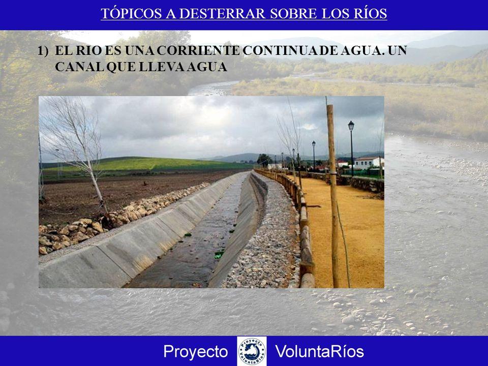 1)EL RIO ES UNA CORRIENTE CONTINUA DE AGUA. UN CANAL QUE LLEVA AGUA