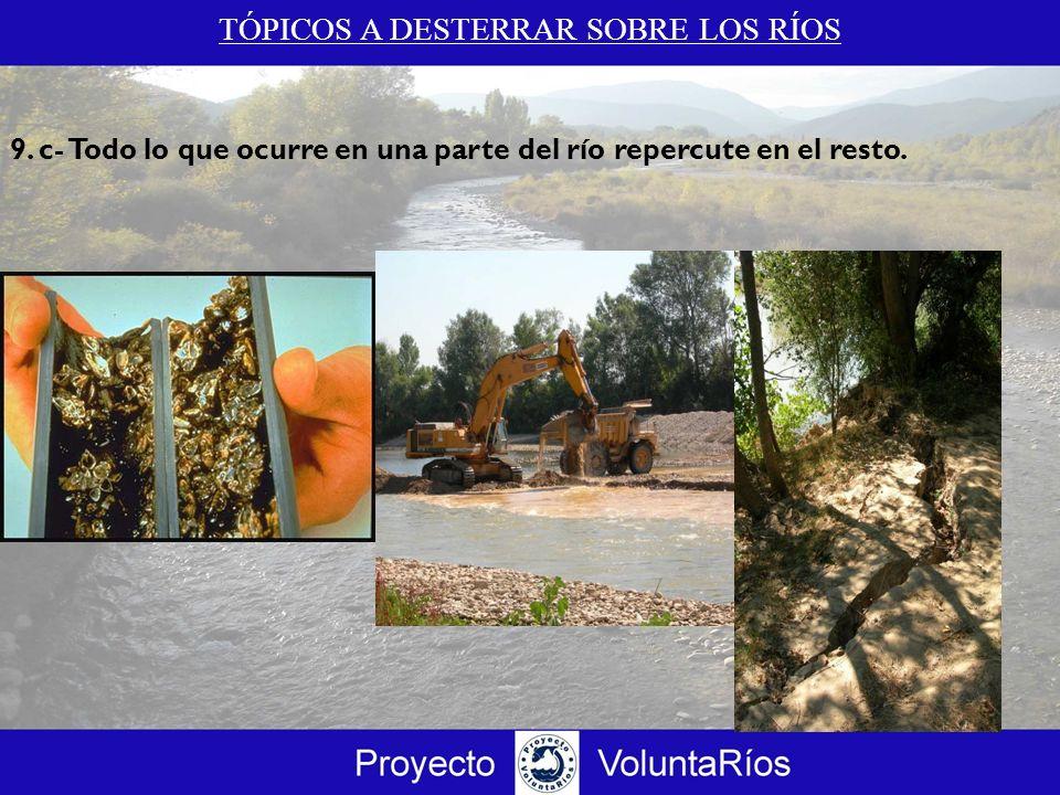 TÓPICOS A DESTERRAR SOBRE LOS RÍOS 9. c- Todo lo que ocurre en una parte del río repercute en el resto.