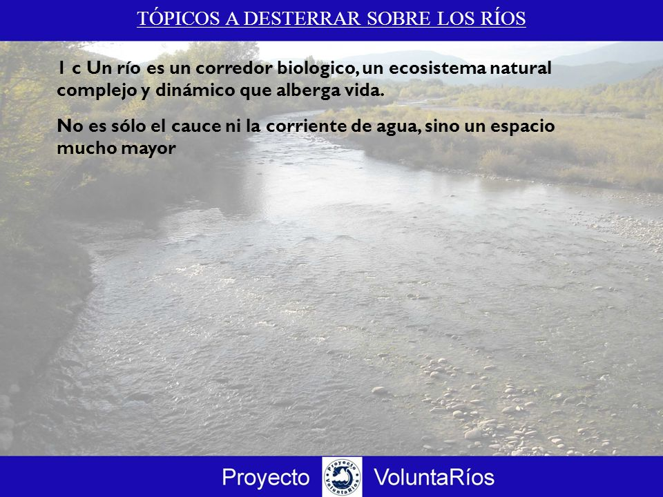 TÓPICOS A DESTERRAR SOBRE LOS RÍOS 1 c Un río es un corredor biologico, un ecosistema natural complejo y dinámico que alberga vida. No es sólo el cauc