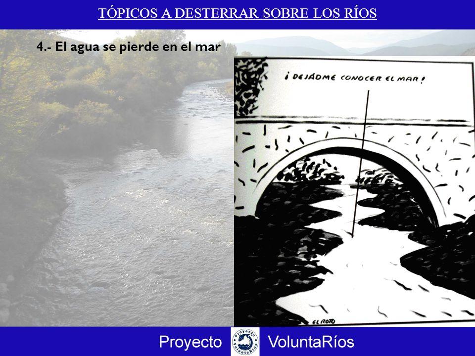 TÓPICOS A DESTERRAR SOBRE LOS RÍOS 4.c El agua no se pierde en el mar Fuente: Satélite Modis Web.