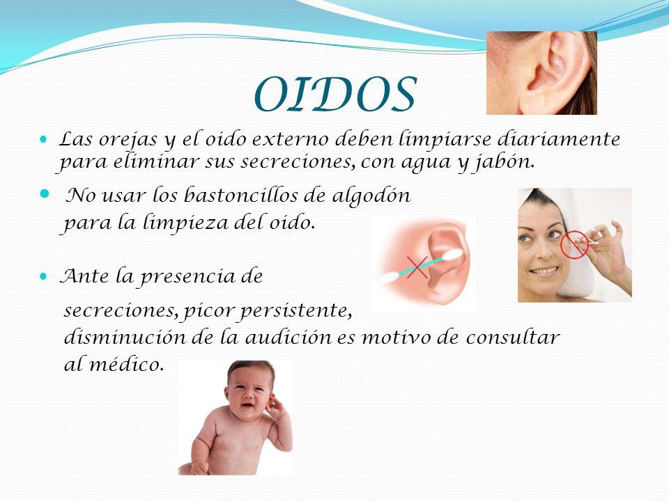 OIDOS Las orejas y el oido externo deben limpiarse diariamente para eliminar sus secreciones, con agua y jabón. No usar los bastoncillos de algodón pa