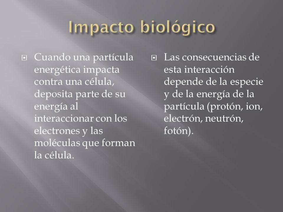 Cuando una partícula energética impacta contra una célula, deposita parte de su energía al interaccionar con los electrones y las moléculas que forman