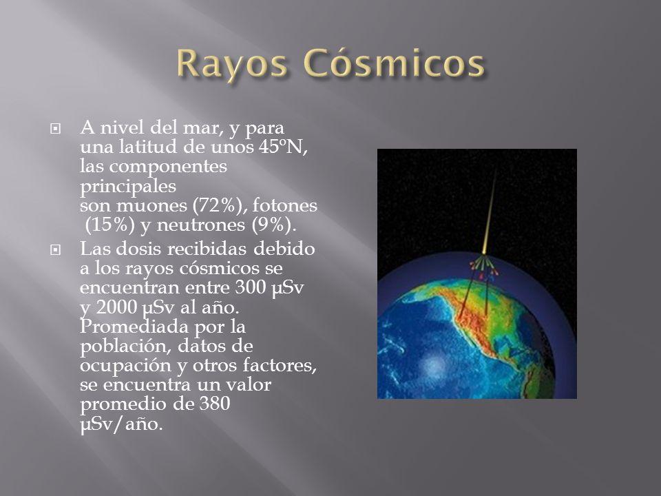 A nivel del mar, y para una latitud de unos 45ºN, las componentes principales son muones (72%), fotones (15%) y neutrones (9%). Las dosis recibidas de