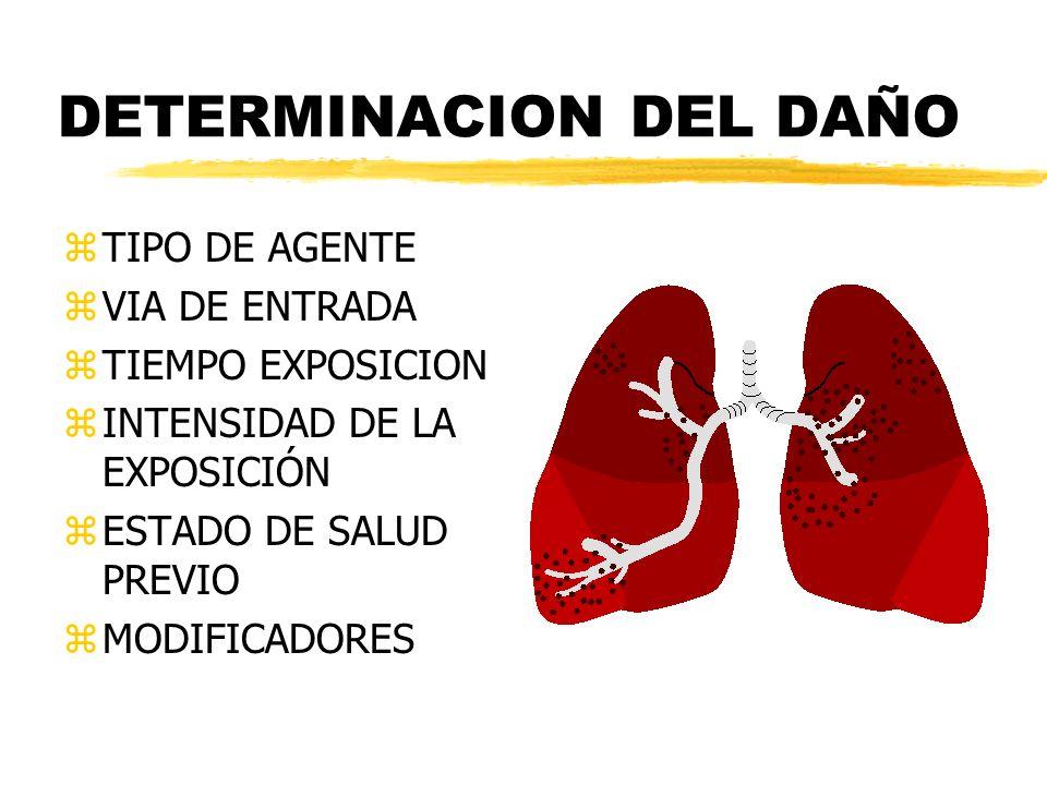 DETERMINACION DEL DAÑO zTIPO DE AGENTE zVIA DE ENTRADA zTIEMPO EXPOSICION zINTENSIDAD DE LA EXPOSICIÓN zESTADO DE SALUD PREVIO zMODIFICADORES