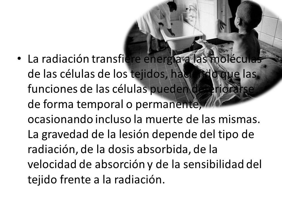La radiación transfiere energía a las moléculas de las células de los tejidos, haciendo que las funciones de las células pueden deteriorarse de forma