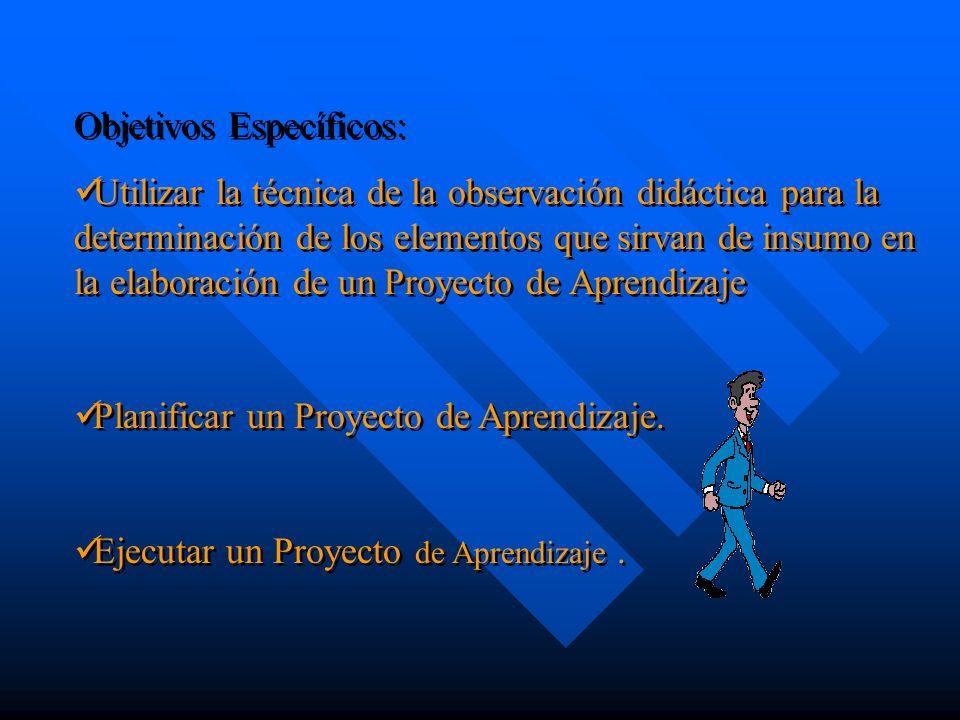 Descripción de las fases de la etapa de ejecución del Proyecto de Aprendizaje.
