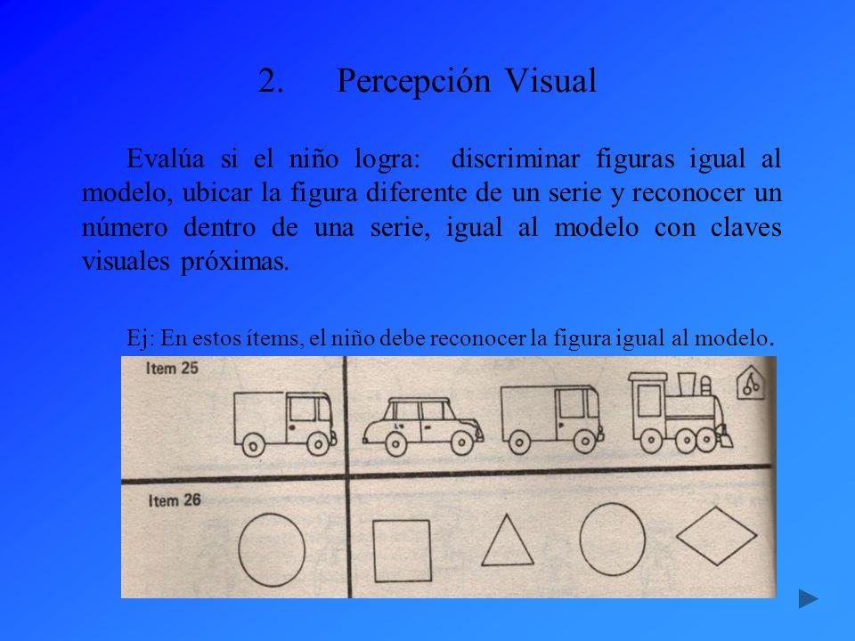 2.Percepción Visual Evalúa si el niño logra: discriminar figuras igual al modelo, ubicar la figura diferente de un serie y reconocer un número dentro
