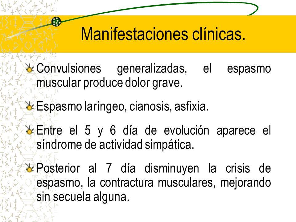 Manifestaciones clínicas. Convulsiones generalizadas, el espasmo muscular produce dolor grave. Espasmo laríngeo, cianosis, asfixia. Entre el 5 y 6 día
