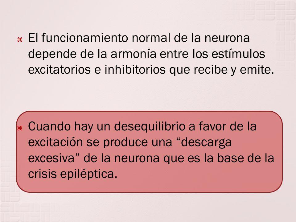 El funcionamiento normal de la neurona depende de la armonía entre los estímulos excitatorios e inhibitorios que recibe y emite. Cuando hay un desequi