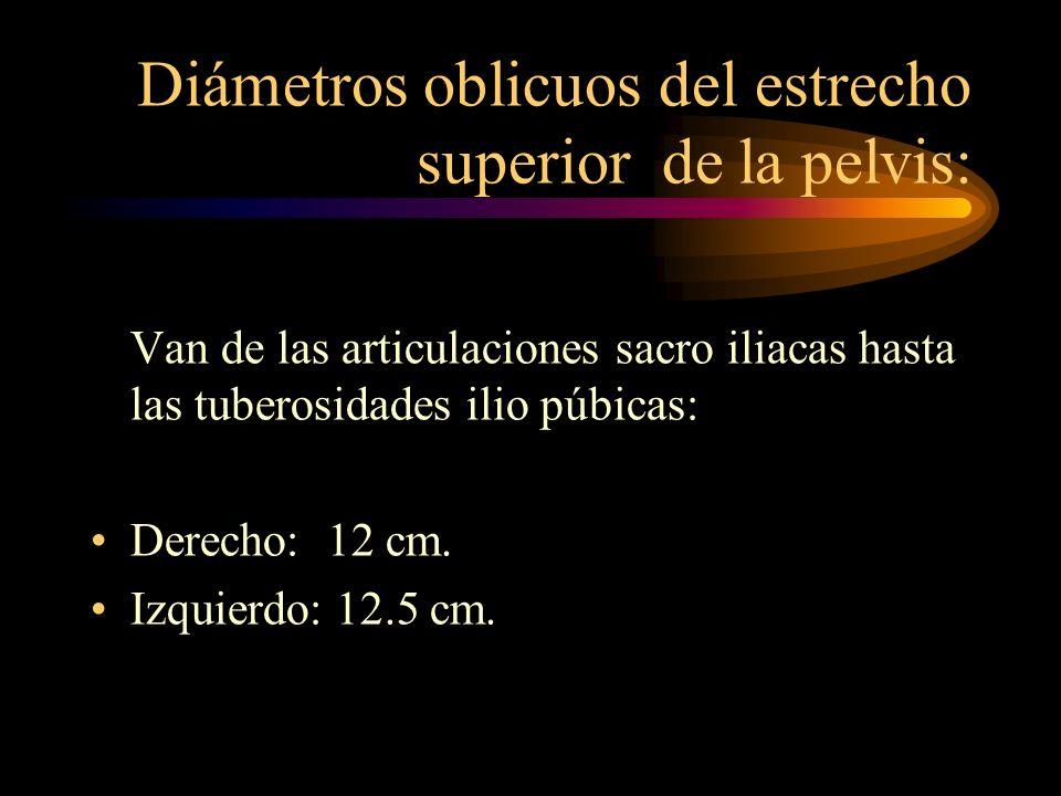 Diámetros oblicuos del estrecho superior de la pelvis: Van de las articulaciones sacro iliacas hasta las tuberosidades ilio púbicas: Derecho: 12 cm. I