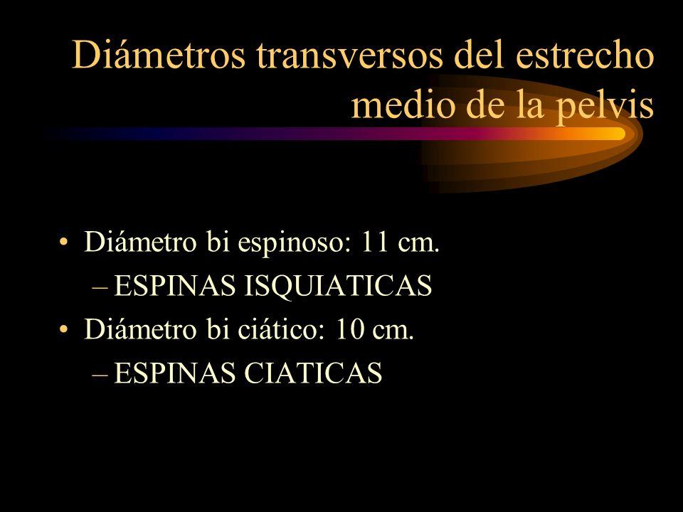 Diámetros transversos del estrecho medio de la pelvis Diámetro bi espinoso: 11 cm. –ESPINAS ISQUIATICAS Diámetro bi ciático: 10 cm. –ESPINAS CIATICAS