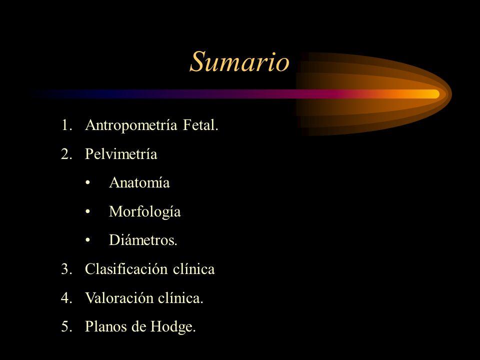 Sumario 1.Antropometría Fetal. 2.Pelvimetría Anatomía Morfología Diámetros. 3.Clasificación clínica 4.Valoración clínica. 5.Planos de Hodge.