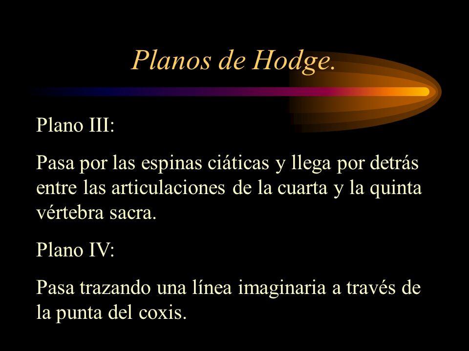 Planos de Hodge. Plano III: Pasa por las espinas ciáticas y llega por detrás entre las articulaciones de la cuarta y la quinta vértebra sacra. Plano I