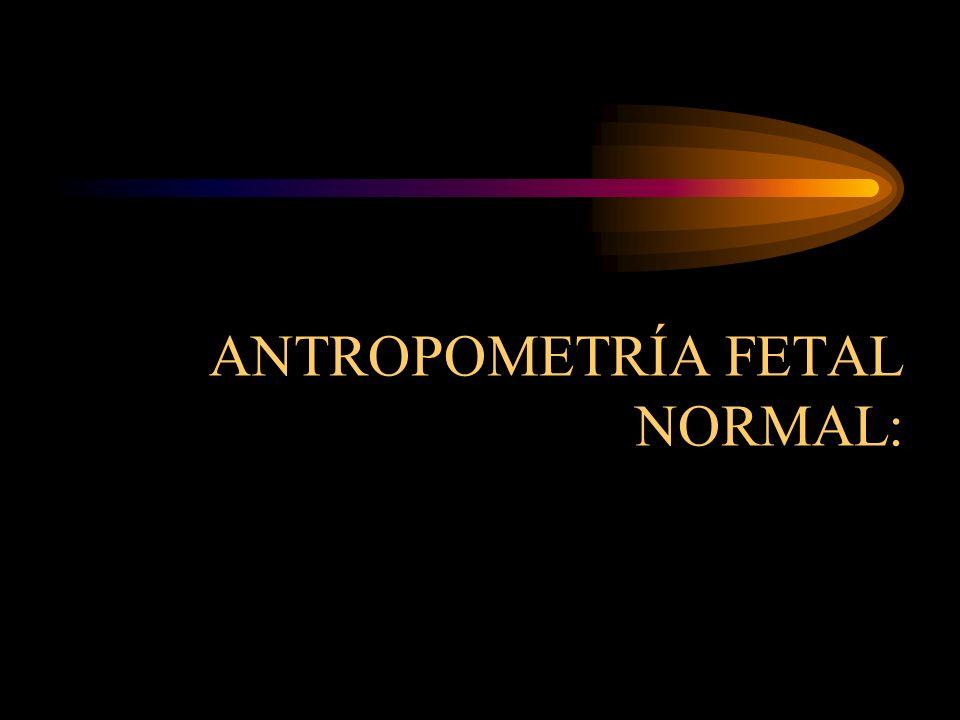 Diámetros transversos del estrecho superior de la pelvis : -Diámetro bi iliaco o bi crestilio: 28 cm.
