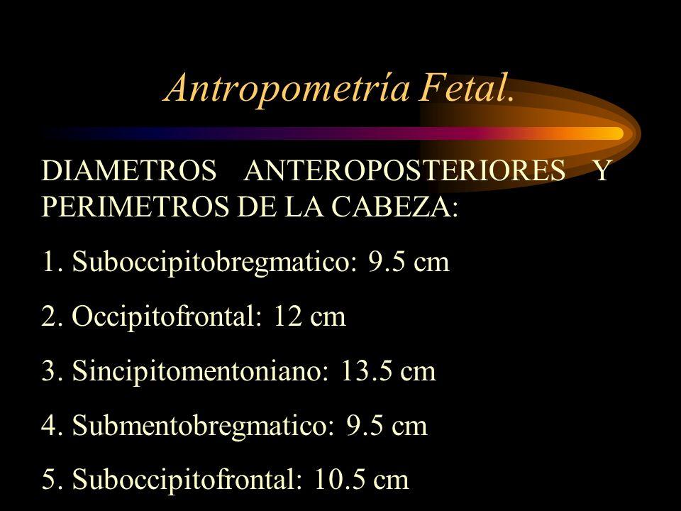 Antropometría Fetal. DIAMETROS ANTEROPOSTERIORES Y PERIMETROS DE LA CABEZA: 1. Suboccipitobregmatico: 9.5 cm 2. Occipitofrontal: 12 cm 3. Sincipitomen