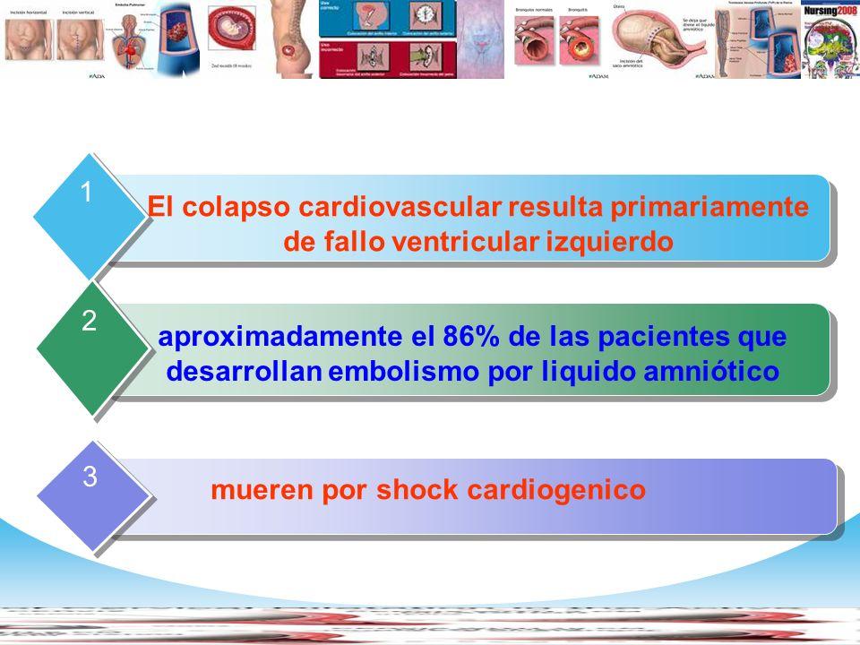 www.themegallery.com Company Logo Contents El colapso cardiovascular resulta primariamente de fallo ventricular izquierdo 1 aproximadamente el 86% de