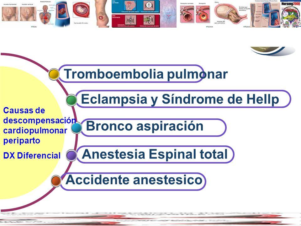 www.thmemgallery.com Company Logo Contents Accidente anestesico Anestesia Espinal total Bronco aspiración Eclampsia y Síndrome de Hellp Tromboembolia