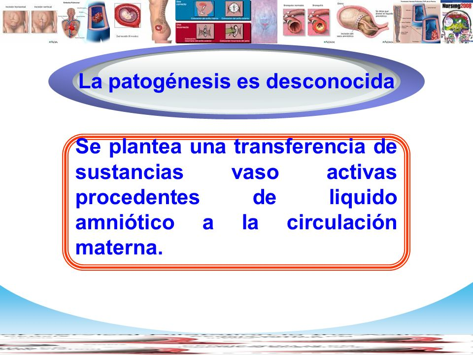 www.themegallery.com Company Logo Se plantea una transferencia de sustancias vaso activas procedentes de liquido amniótico a la circulación materna. D