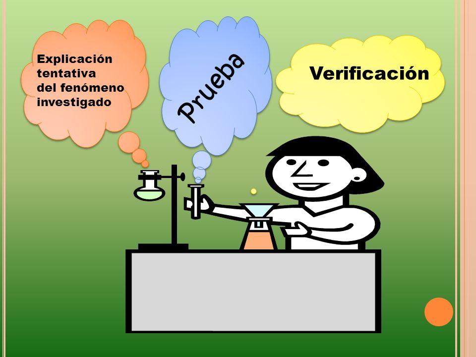 Prueba Explicación tentativa del fenómeno investigado Verificación