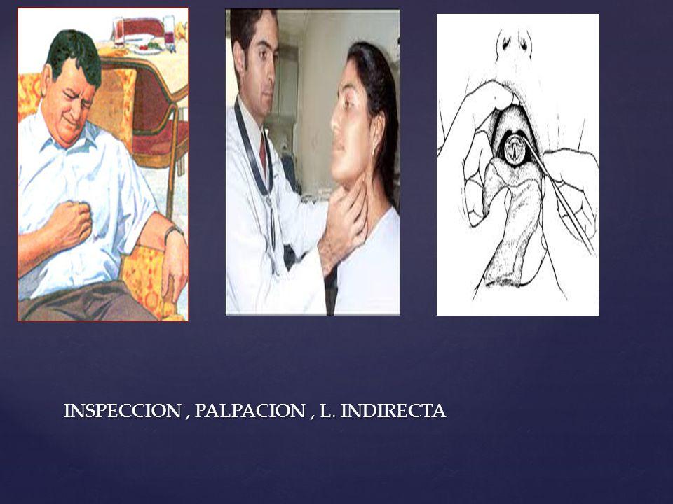 INSPECCION, PALPACION, L. INDIRECTA