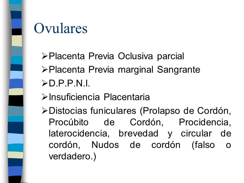 Ovulares Placenta Previa Oclusiva parcial Placenta Previa marginal Sangrante D.P.P.N.I. Insuficiencia Placentaria Distocias funiculares (Prolapso de C