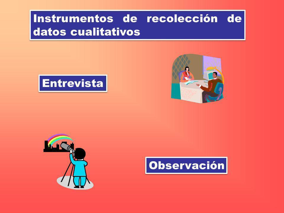 Instrumentos de recolección de datos cualitativos Entrevista Observación