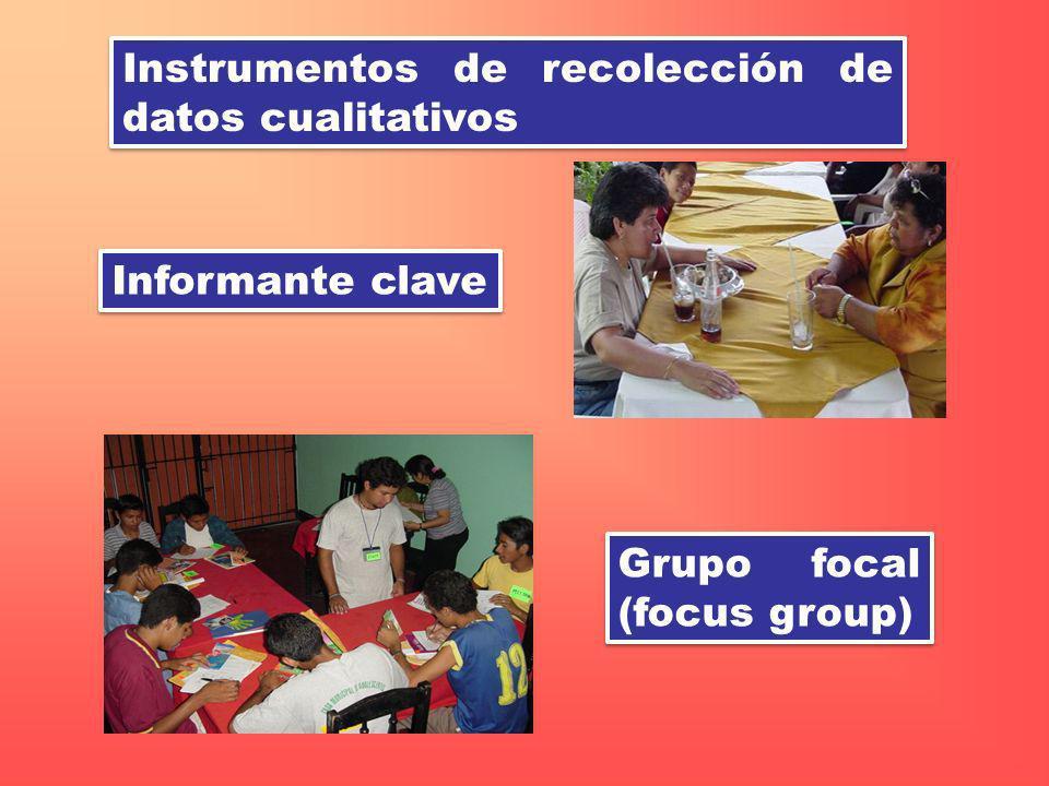 Instrumentos de recolección de datos cualitativos Grupo focal (focus group) Informante clave