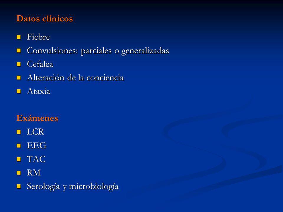 Datos clínicos Fiebre Fiebre Convulsiones: parciales o generalizadas Convulsiones: parciales o generalizadas Cefalea Cefalea Alteración de la concienc
