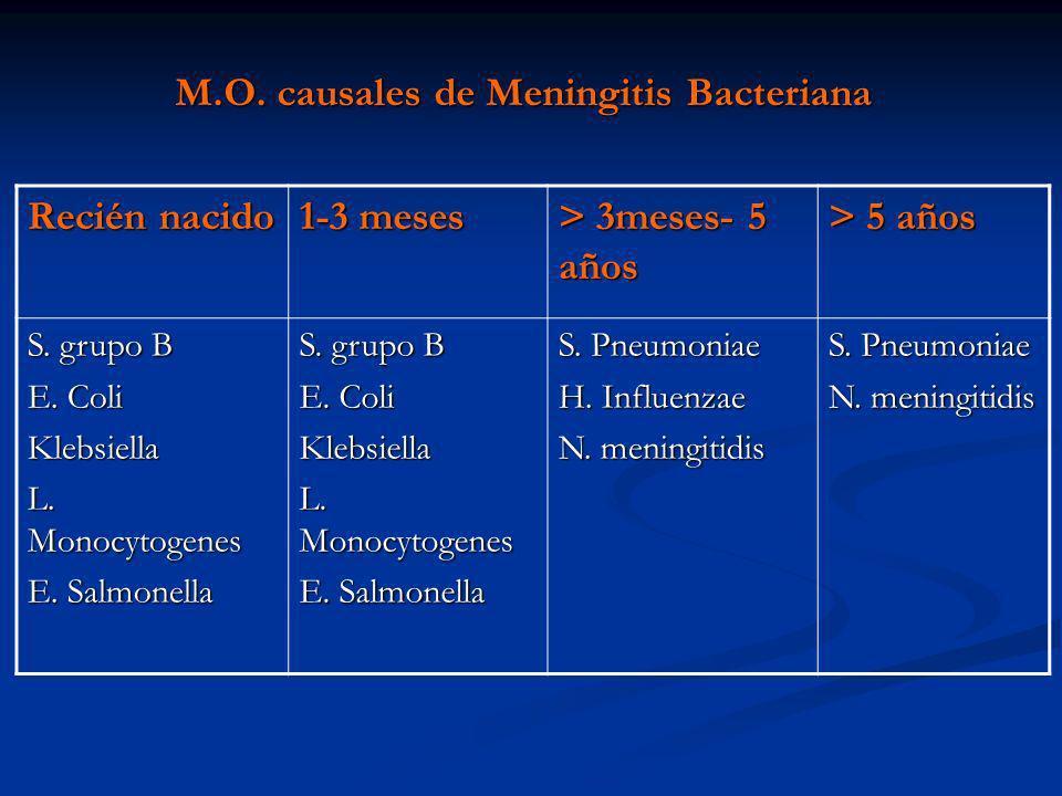 M.O. causales de Meningitis Bacteriana Recién nacido 1-3 meses > 3meses- 5 años > 5 años S. grupo B E. Coli Klebsiella L. Monocytogenes E. Salmonella