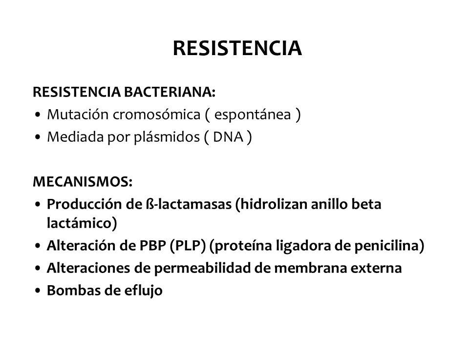 RAM / COMBINACIONES REACCIONES ADVERSAS: Hipersensibilidad Toxicidad directa Sobreinfección o aparición de resistencia