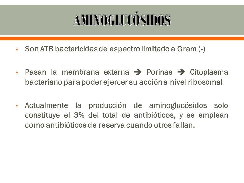 Son ATB bactericidas de espectro limitado a Gram (-) Pasan la membrana externa Porinas Citoplasma bacteriano para poder ejercer su acción a nivel ribo
