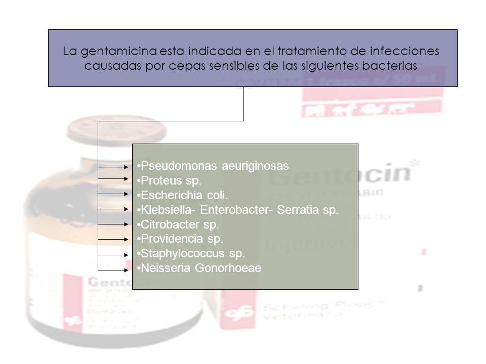 Pseudomonas aeuriginosas Proteus sp. Escherichia coli. Klebsiella- Enterobacter- Serratia sp. Citrobacter sp. Providencia sp. Staphylococcus sp. Neiss