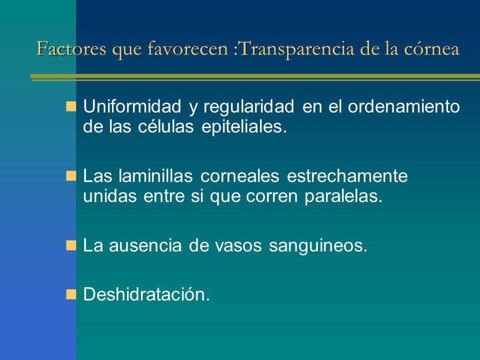 Factores que favorecen :Transparencia de la córnea Uniformidad y regularidad en el ordenamiento de las células epiteliales. Las laminillas corneales e