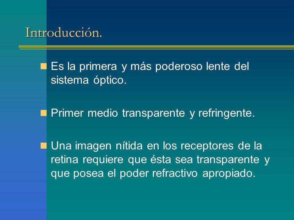 Introducción. Es la primera y más poderoso lente del sistema óptico. Primer medio transparente y refringente. Una imagen nítida en los receptores de l