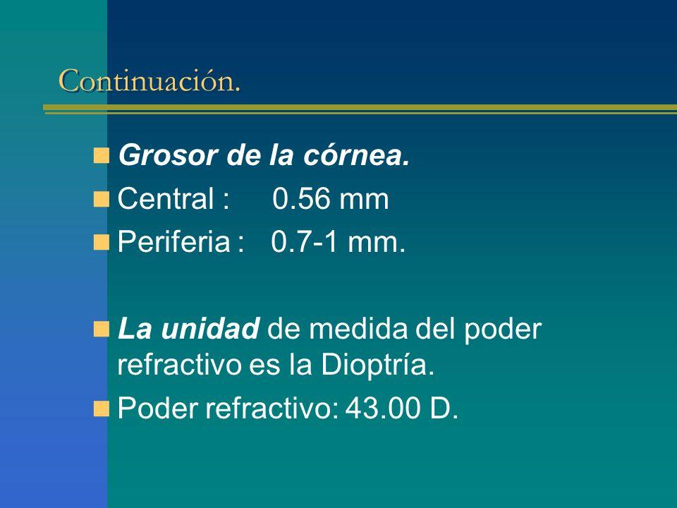 Continuación. Grosor de la córnea. Central : 0.56 mm Periferia : 0.7-1 mm. La unidad de medida del poder refractivo es la Dioptría. Poder refractivo: