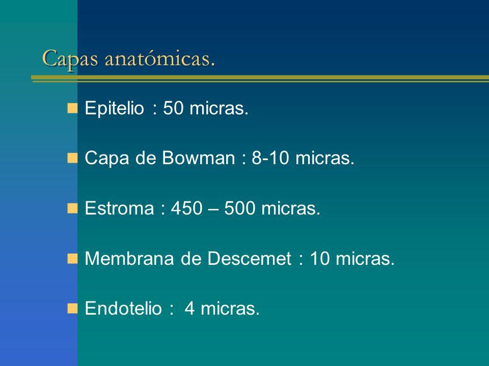 Capas anatómicas. Epitelio : 50 micras. Capa de Bowman : 8-10 micras. Estroma : 450 – 500 micras. Membrana de Descemet : 10 micras. Endotelio : 4 micr