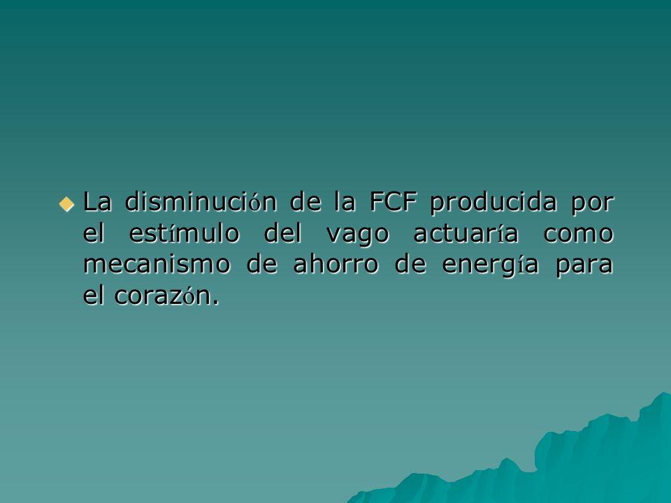 La disminuci ó n de la FCF producida por el est í mulo del vago actuar í a como mecanismo de ahorro de energ í a para el coraz ó n. La disminuci ó n d