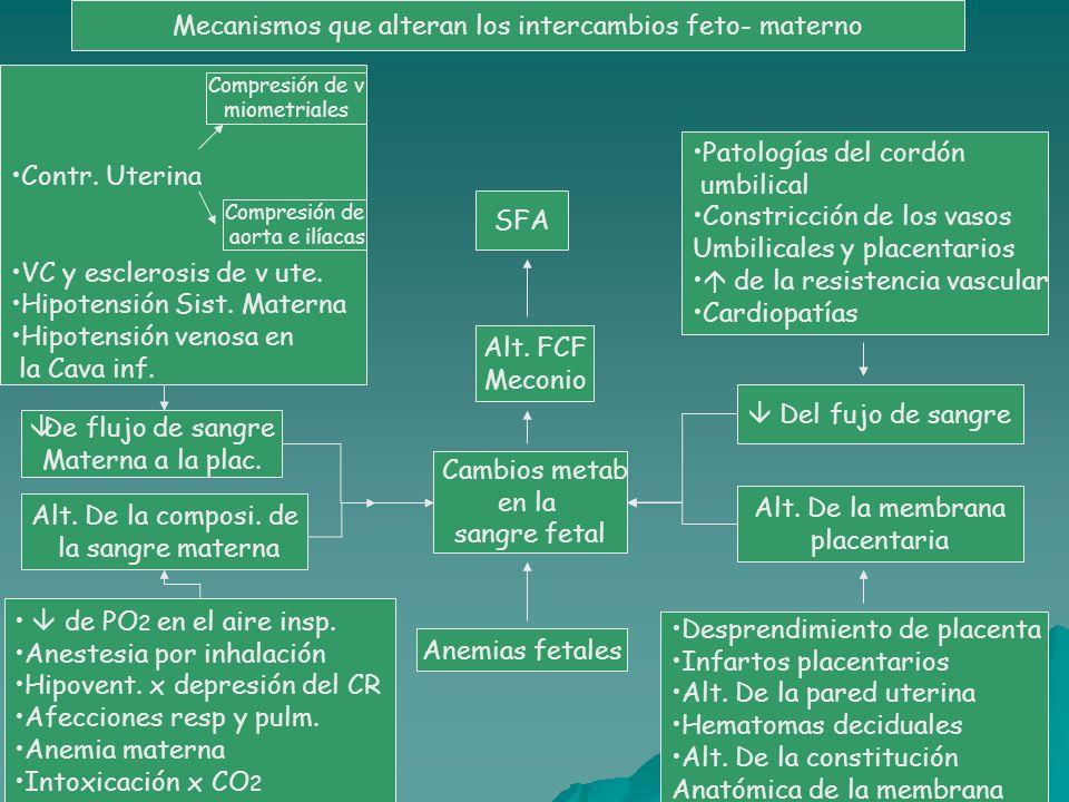 Mecanismos que alteran los intercambios feto- materno SFA Alt. FCF Meconio Cambios metab en la sangre fetal Anemias fetales Patologías del cordón umbi
