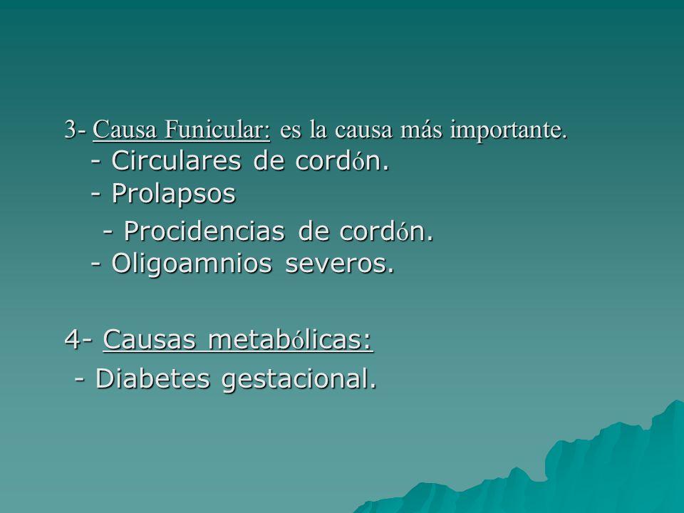 3- Causa Funicular: es la causa más importante. - Circulares de cord ó n. - Prolapsos - Procidencias de cord ó n. - Oligoamnios severos. - Procidencia