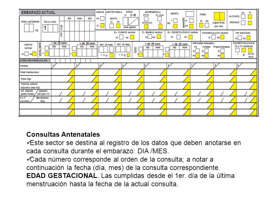 Consultas Antenatales Este sector se destina al registro de los datos que deben anotarse en cada consulta durante el embarazo: DIA /MES. Cada número c