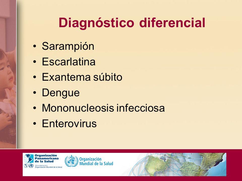 Diagnóstico diferencial Sarampión Escarlatina Exantema súbito Dengue Mononucleosis infecciosa Enterovirus