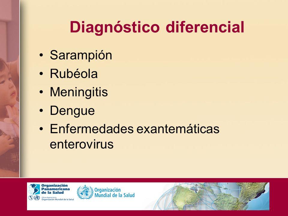 Diagnóstico diferencial Sarampión Rubéola Meningitis Dengue Enfermedades exantemáticas enterovirus