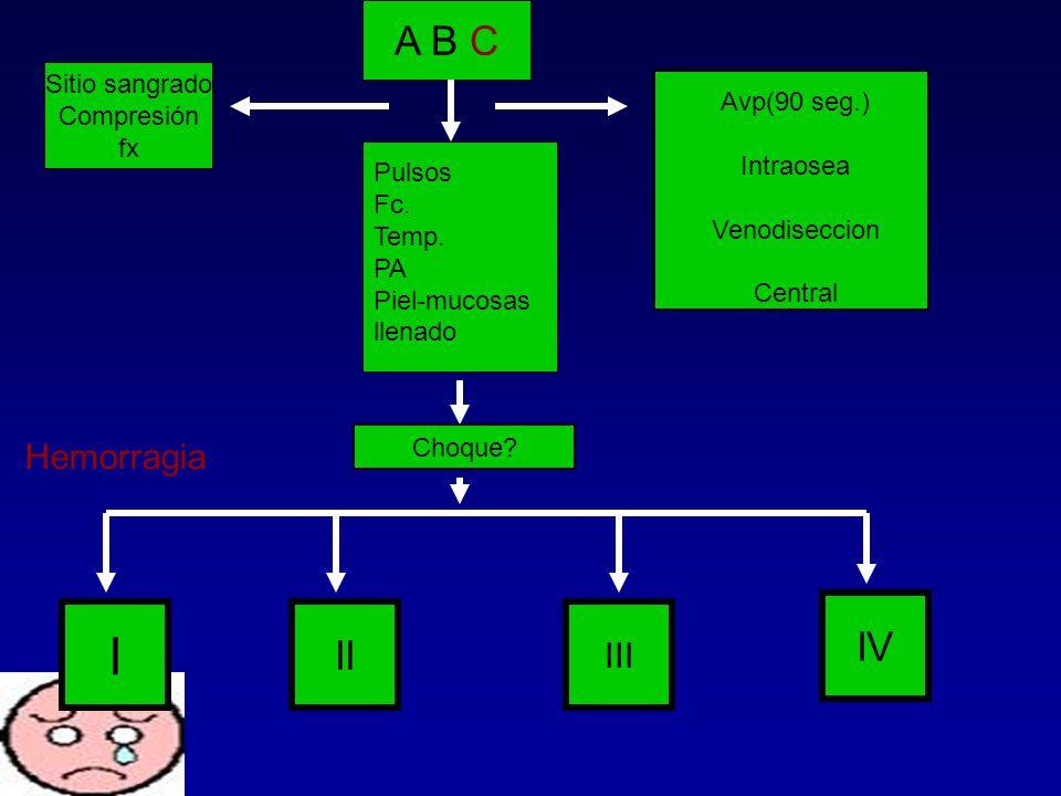 A B C Sitio sangrado Compresión fx Pulsos Fc. Temp. PA Piel-mucosas llenado Avp(90 seg.) Intraosea Venodiseccion Central Choque? I II III IV Hemorragi