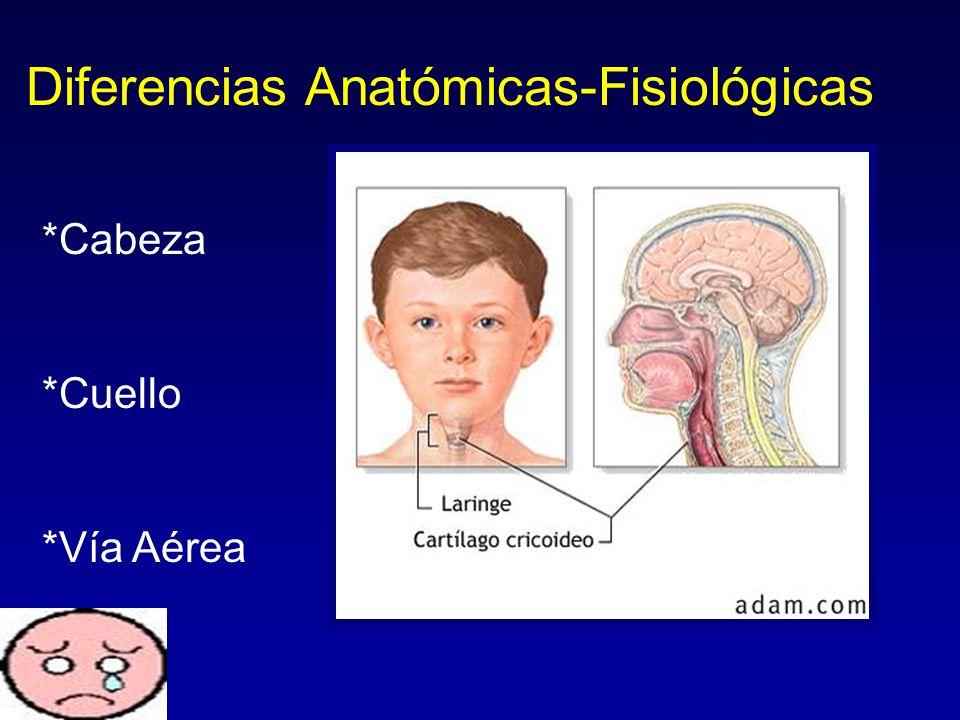 Diferencias Anatómicas-Fisiológicas *Cabeza *Cuello *Vía Aérea