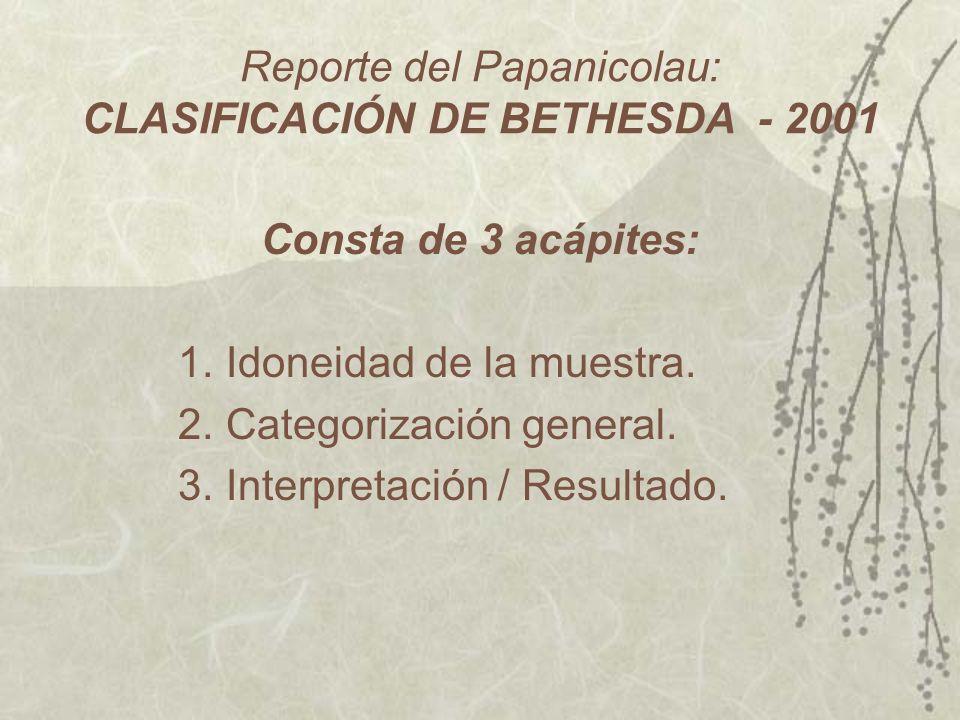 Reporte del Papanicolau: CLASIFICACIÓN DE BETHESDA - 2001 Consta de 3 acápites: 1.Idoneidad de la muestra. 2.Categorización general. 3.Interpretación