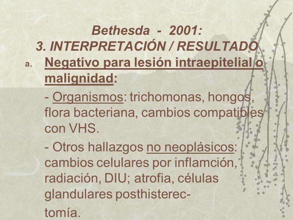 Bethesda - 2001: 3. INTERPRETACIÓN / RESULTADO a. Negativo para lesión intraepitelial o malignidad: - Organismos: trichomonas, hongos, flora bacterian