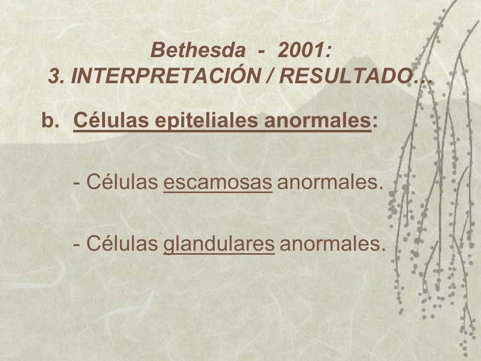Bethesda - 2001: 3. INTERPRETACIÓN / RESULTADO… b. Células epiteliales anormales: - Células escamosas anormales. - Células glandulares anormales.