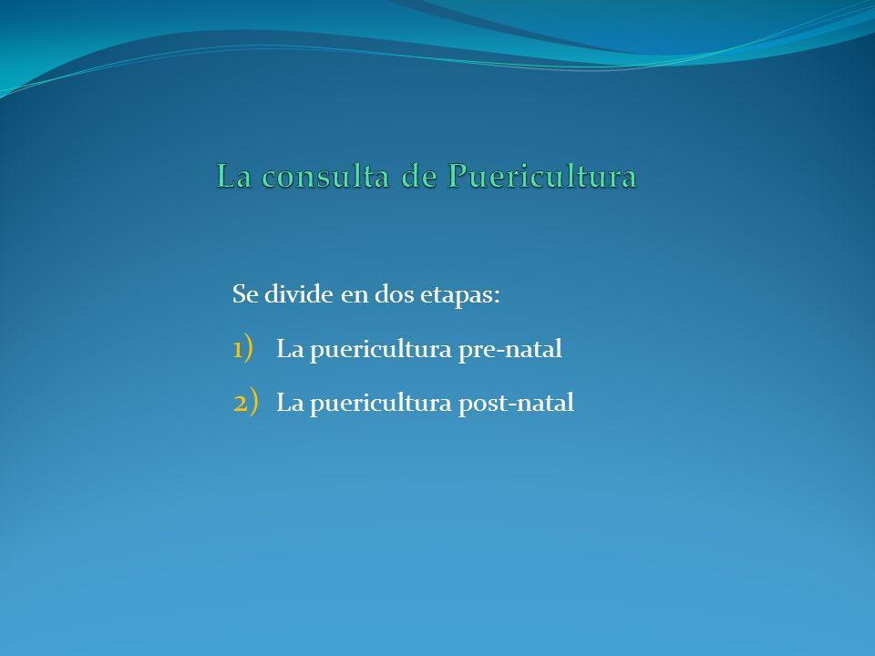 Se divide en dos etapas: 1) La puericultura pre-natal 2) La puericultura post-natal